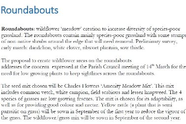 Roundabouts - Wildflower Areas - Photographer Eynsham Nature Recovery Network